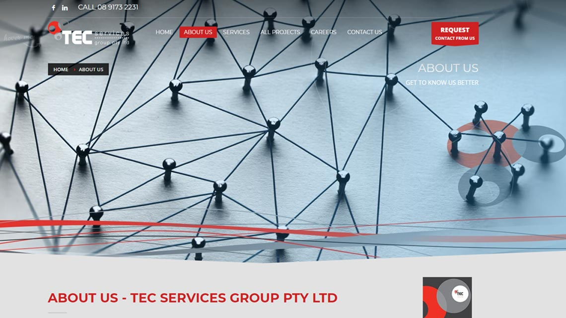 TEC Services Pineaple Planet